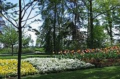 kvetinovy park keukenhof