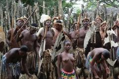 zuluovia