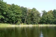 jazero izra
