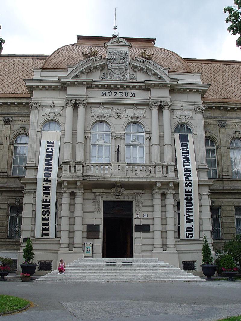 vychodoslovenske muzeum