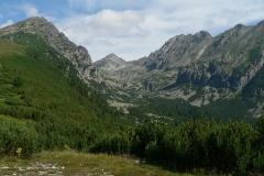 mlynicka dolina