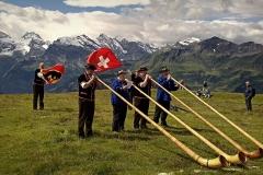 hra na alpskom rohu