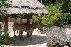bojnicka zoo